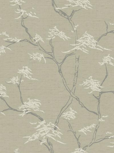 The wallpaper Temple Tree from Boråstapeter. The wallpaper design and pattern is neutrals and consists of Foliage Tree