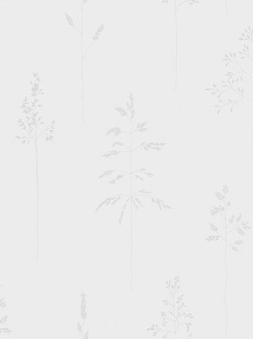 The wallpaper Chalk Straw from Boråstapeter. The wallpaper design and pattern is white and consists of Plants Sketched