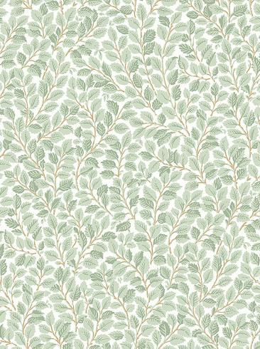 The wallpaper Hazel from Boråstapeter. The wallpaper design and pattern is green and consists of Foliage