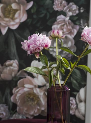 The wallpaper New Dawn Rose from Boråstapeter. The wallpaper design and pattern is black and consists of Floral
