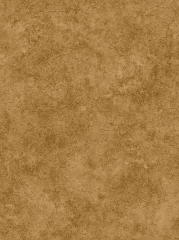 The wallpaper Royal from Engblad & Co. The wallpaper design and pattern is brown and consists of Single Colour