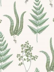 The wallpaper Herba from Boråstapeter. The wallpaper design and pattern is white and consists of Foliage Plants