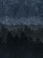The wallpaper Nordic Night from Engblad & Co. The wallpaper design and pattern is blue and consists of Forest Tree